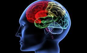 neurofeeedback